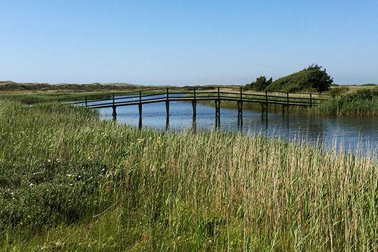 Træbro over en å